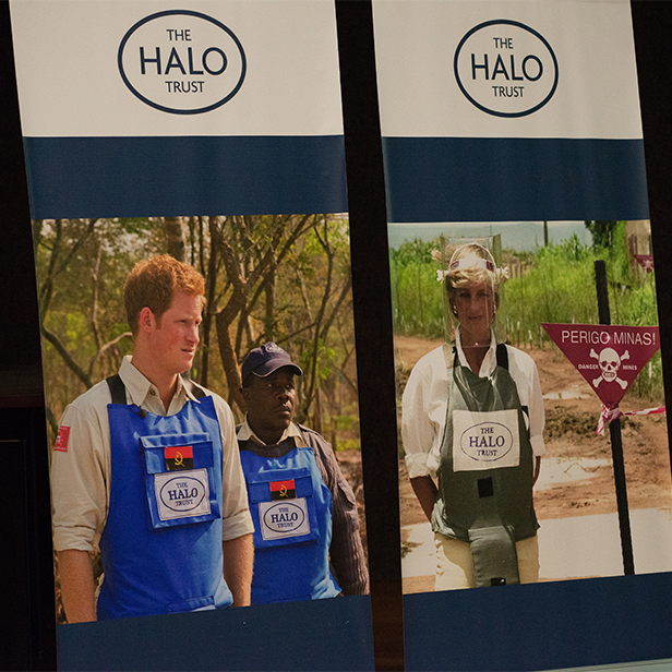 Banner of Prince Harry supporting The HALO Trust as his mother Princess Diana did 20 years ago