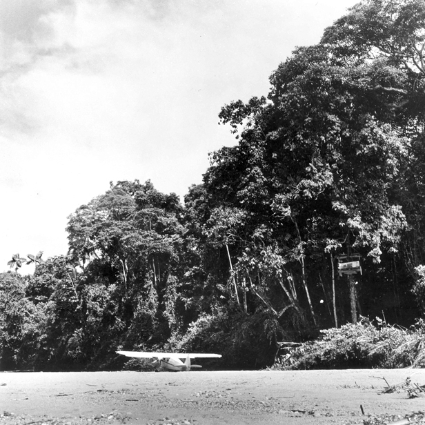 Piper Family Cruiser parked outside the missionaries' jungle tree house on Palm beach.